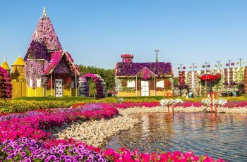A Visitor's Guide To Miracle Garden Dubai | Miracle Garden Dubai Tickets inside Flower Garden Dubai Ticket Price