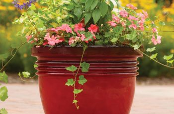 Better Homes And Gardens Bombay Decorative Outdoor Planter, Red regarding Garden Flowers For Sale At Walmart