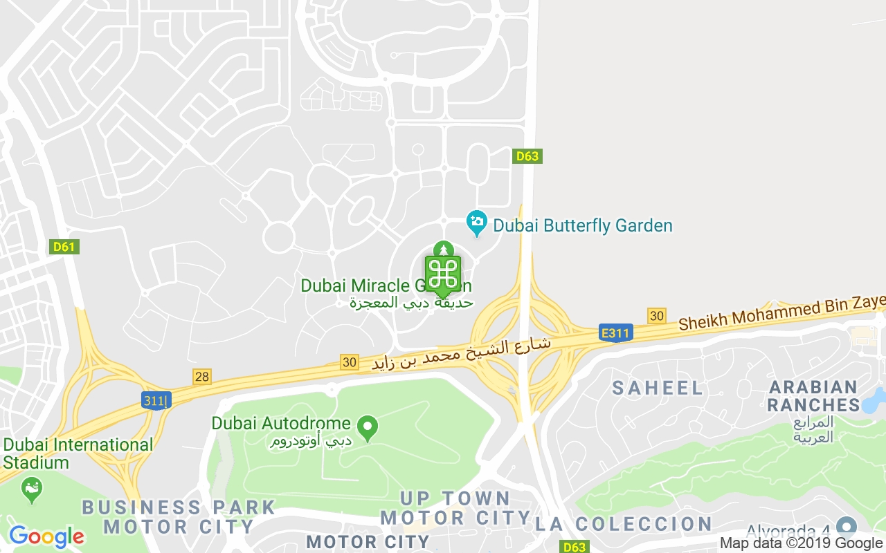 Dubai Miracle Garden - Our Guide Includes Timings, Location, Map with Dubai Flower Garden Location Map