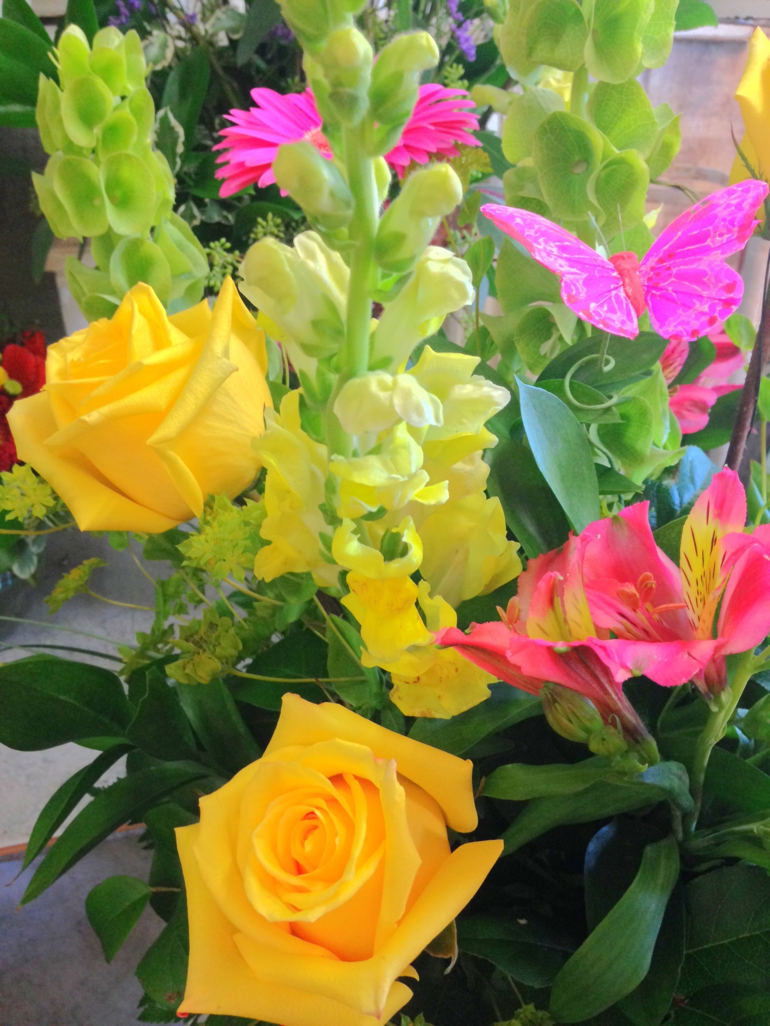 Gardengate #flowers #roses #special #occasion #summer #onedirection with Garden Gate Flowers Yorba Linda