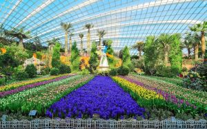 """Gardens By The Bay + Universal Studios Singapore"""" Saver Pass – Hippo in Garden By The Bay Singapore Flower Dome"""