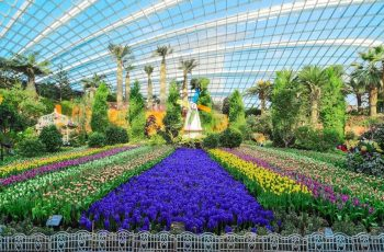 "Gardens By The Bay + Universal Studios Singapore"" Saver Pass – Hippo in Garden By The Bay Singapore Flower Dome"