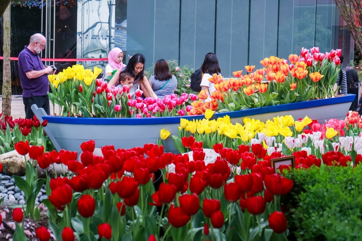 Gardens By The Bay's 2017 Tulip Festival Channels Van Gogh | The for Flower Festival At Garden By The Bay