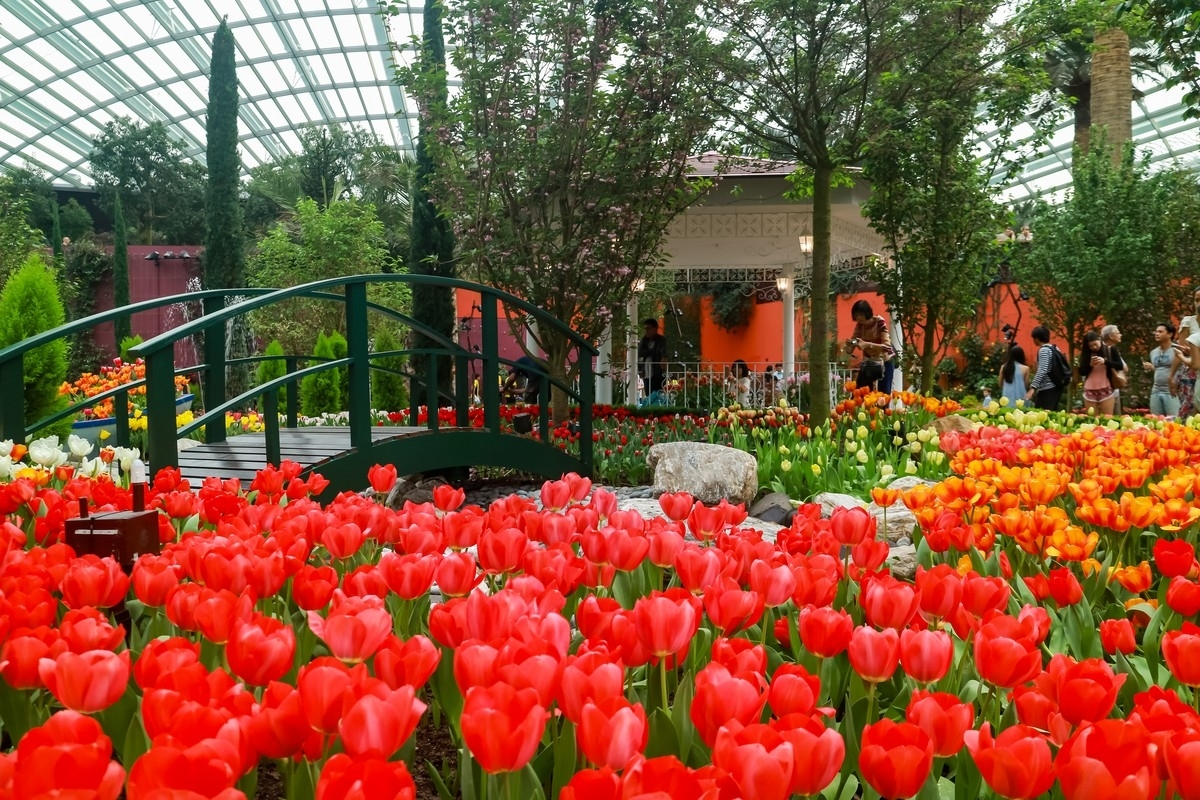 Gardens By The Bay's 2017 Tulip Festival Channels Van Gogh | The with Flower Festival At Garden By The Bay