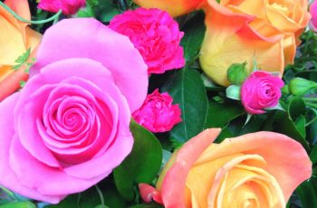 Got #graduation Or Special Occasion Coming Up? #gardengate Will Take for Garden Gate Flowers Yorba Linda