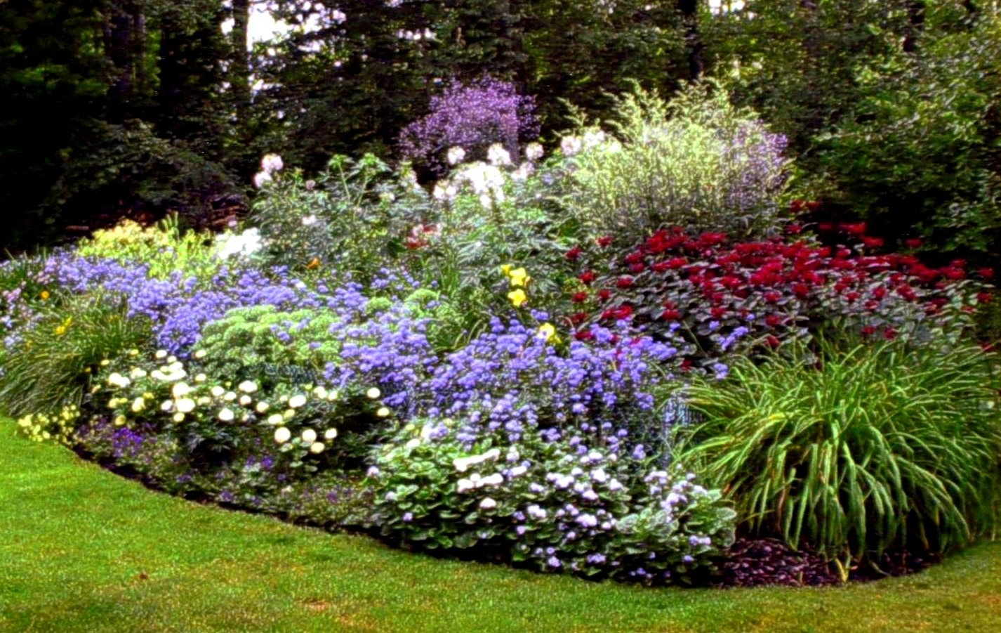 Landscaping Under Pine Trees Dying : Home Design - Landscaping Under inside Flower Garden Under Pine Trees