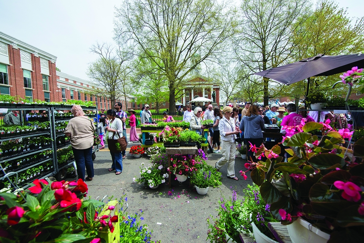 Leesburg Celebrates Spring With Flower And Garden Festival – Loudoun Now with regard to Leesburg Garden And Flower Festival