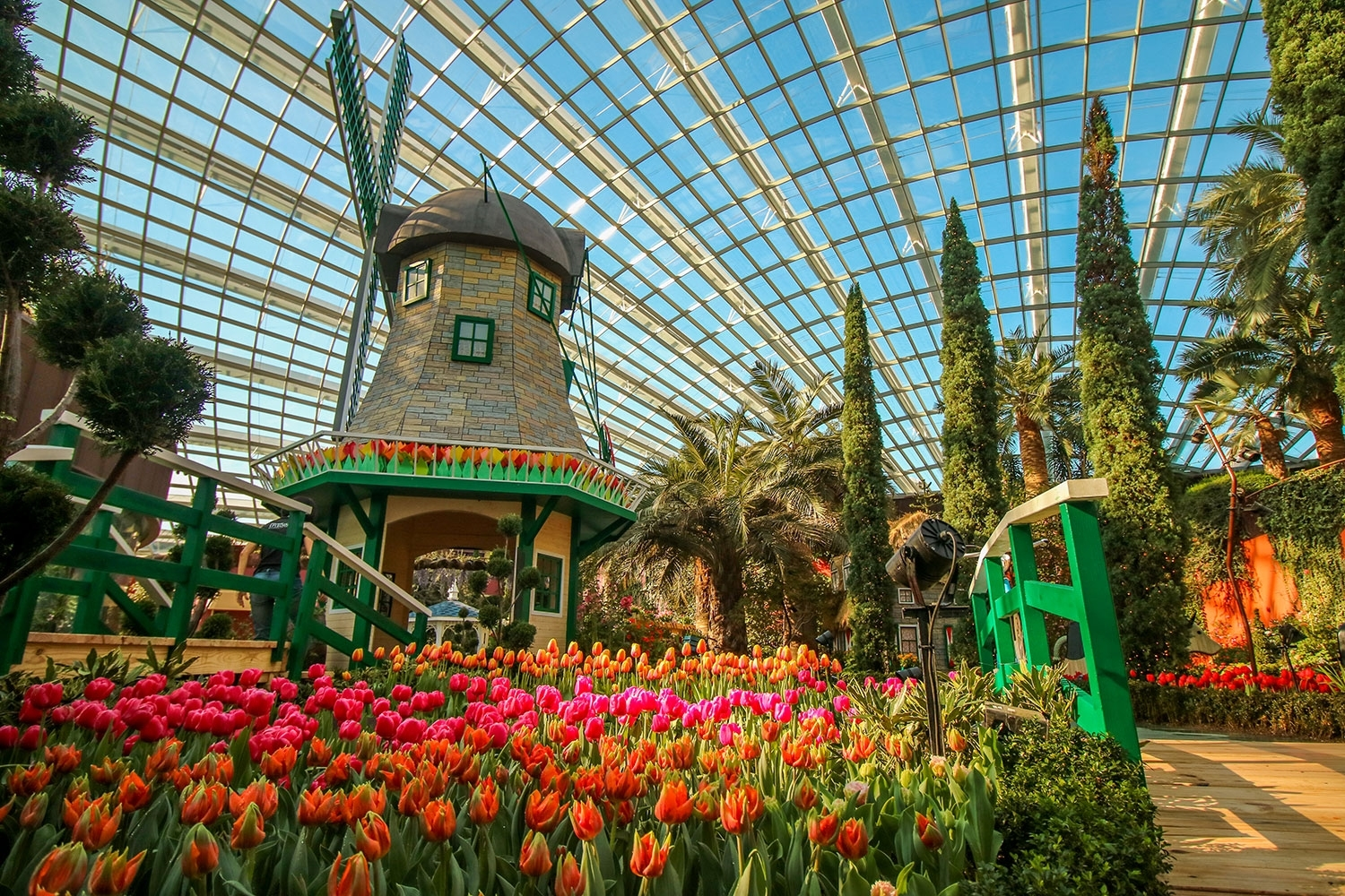 Singapore's Largest Tulip Festival, Tulipmania, Returns To Gardens in Flower Festival At Garden By The Bay