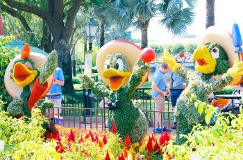 Ultimate Guide To Epcot Flower And Garden Festival | Sarah In The within 2019 Epcot Flower And Garden Festival Guide