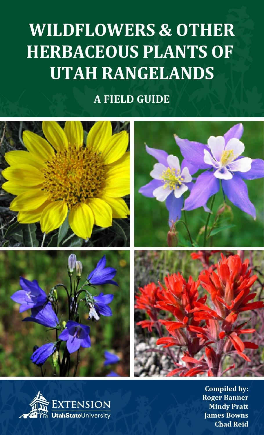 Wildflowers And Other Herbaceous Plants Of Utah Rangelands By Utah intended for How To Play Garden Flower Bloom Level 267