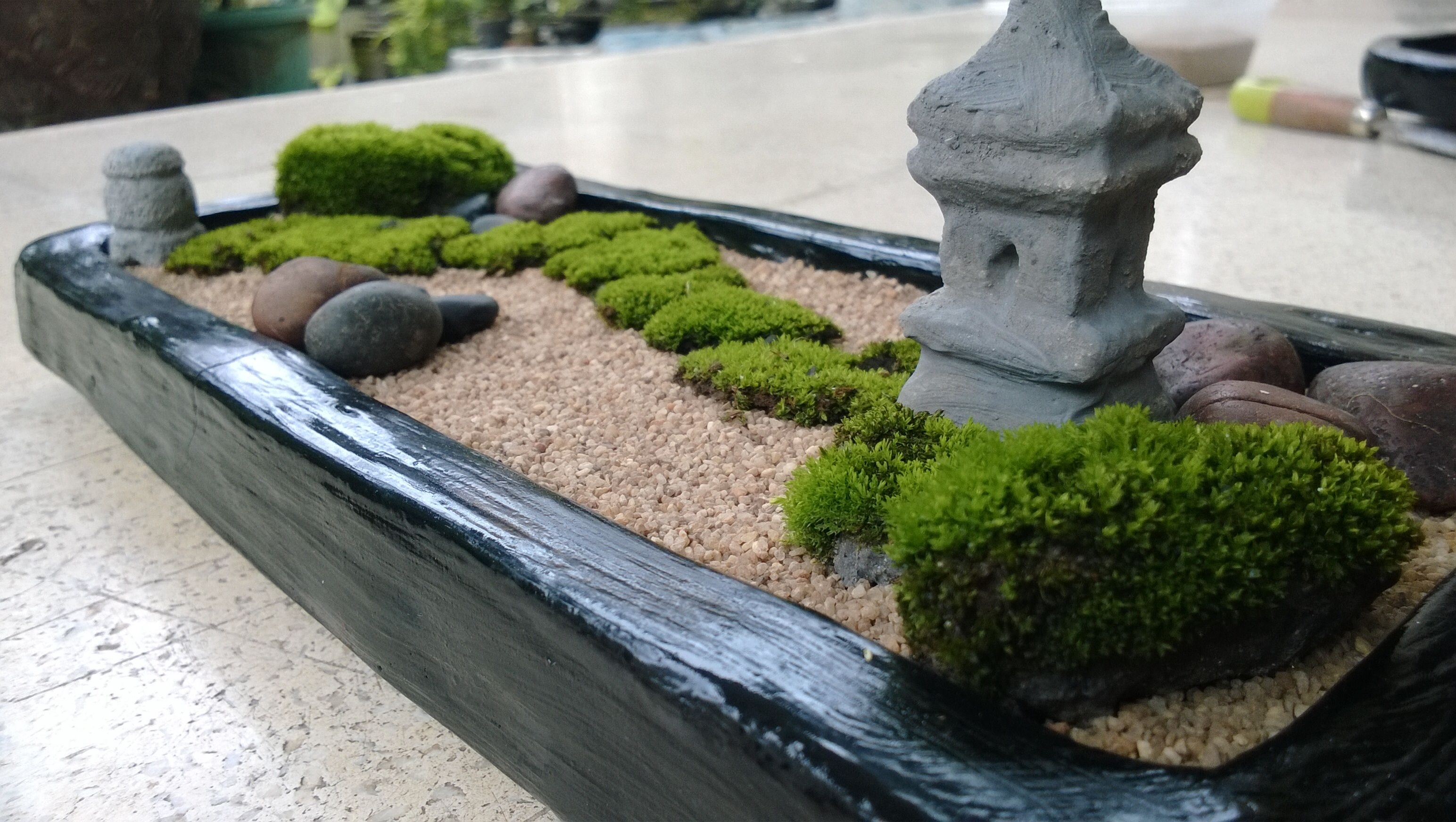 Diy, Your Own Mini Zen Garden Absolutely Love The Moss! I Neeeed A throughout Diy Mini Zen Garden Ideas