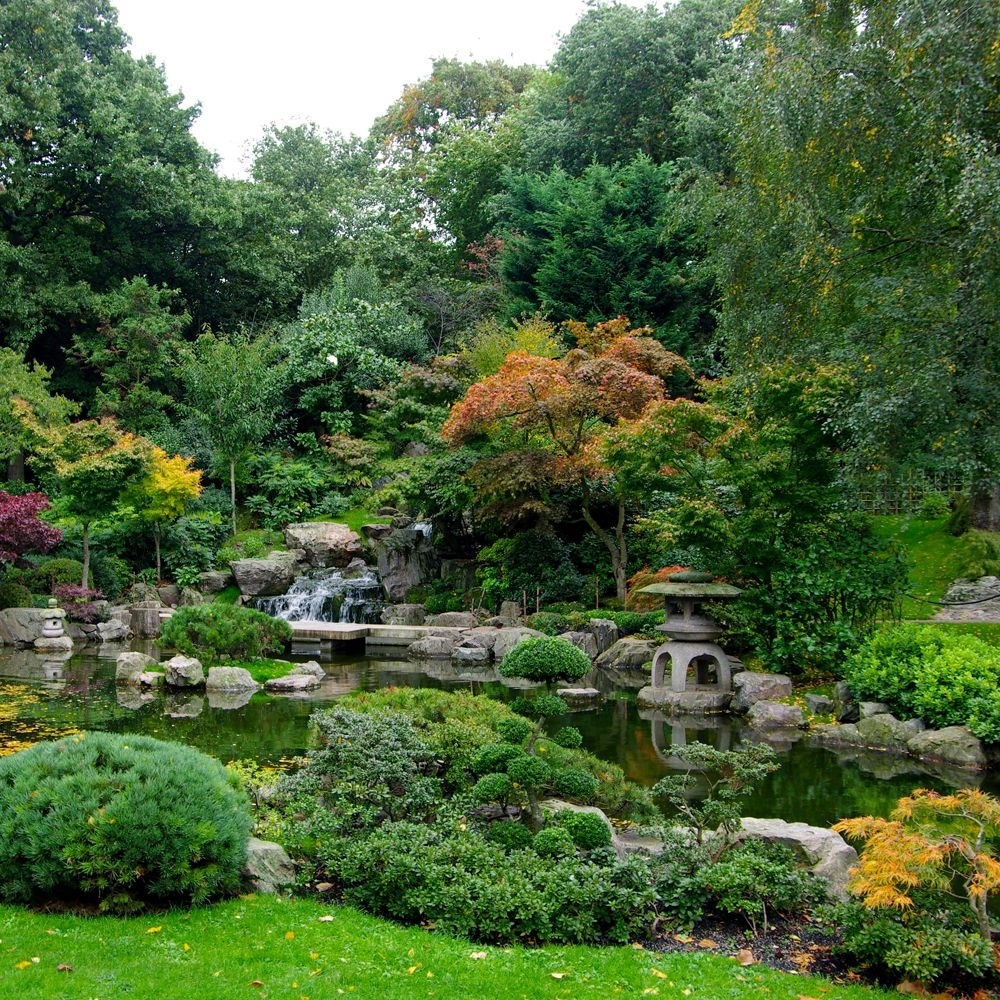 How To Plant A Japanese Garden In A Small Space in Zen Garden Ideas Uk