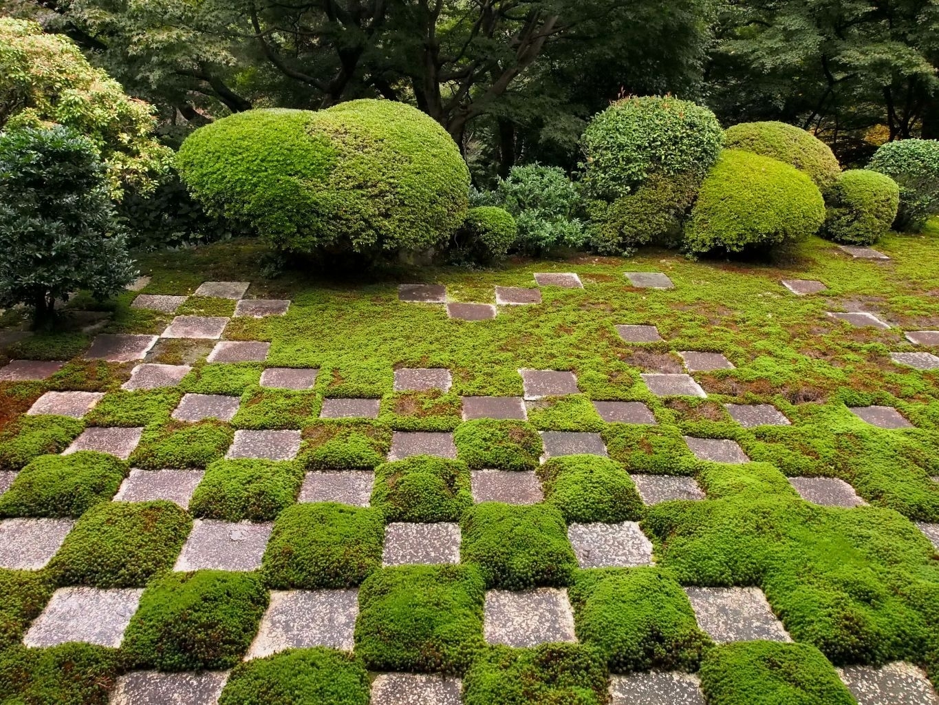 Modernist Zen Gardens In Kyoto | Robin Powell with Zen Garden Design Sydney