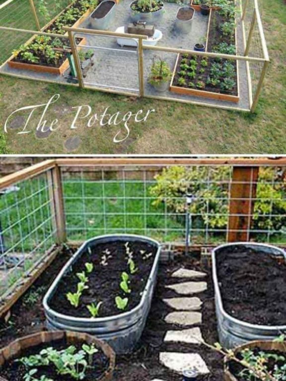 DIY Vegetable Garden Design for Your Home Garden