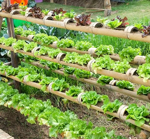 How To Make Hydroponic Garden System