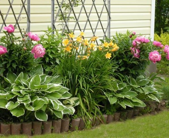 Landscape Garden Bed Ideas