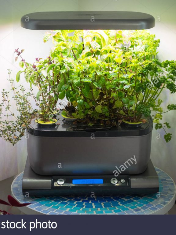 Miracle Gro Hydroponic Garden